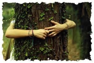 arbre dans vos bras